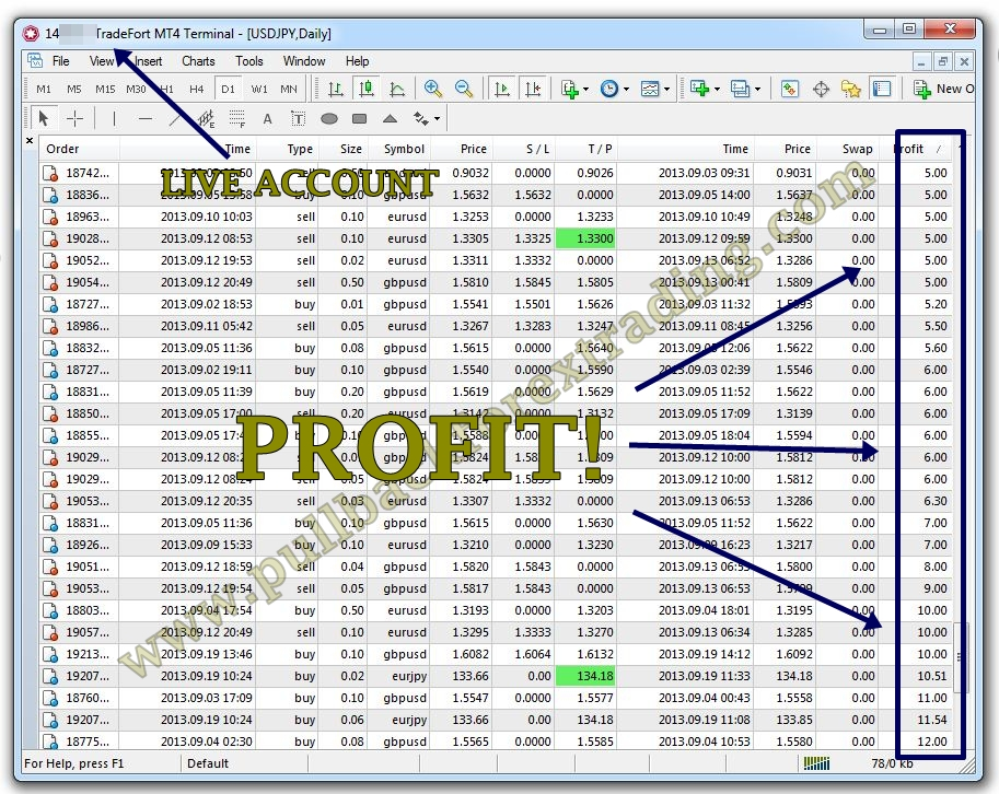 Jutawan binary option